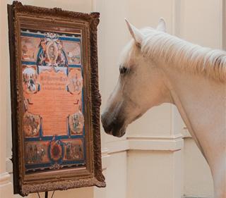 Het levend paardenmuseum